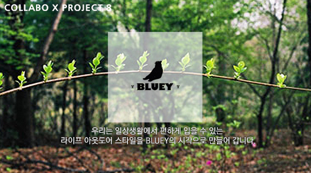 [8th CollaboX] BLUEY